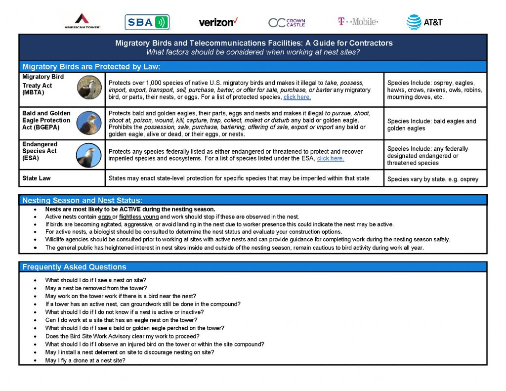 Guidance For Working At Bird Nest Sites 2020 Page 1